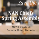 NAN chiefs spring assembly